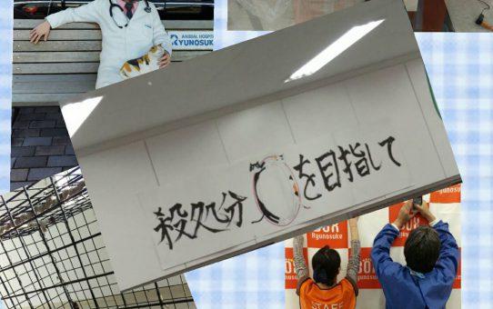 十夢の会。スタッフが竜之介病院のボランティアに参加しました。